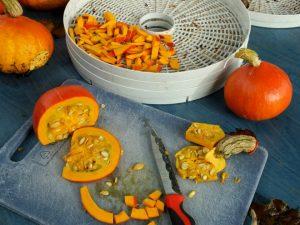ремонт сушилки для овощей